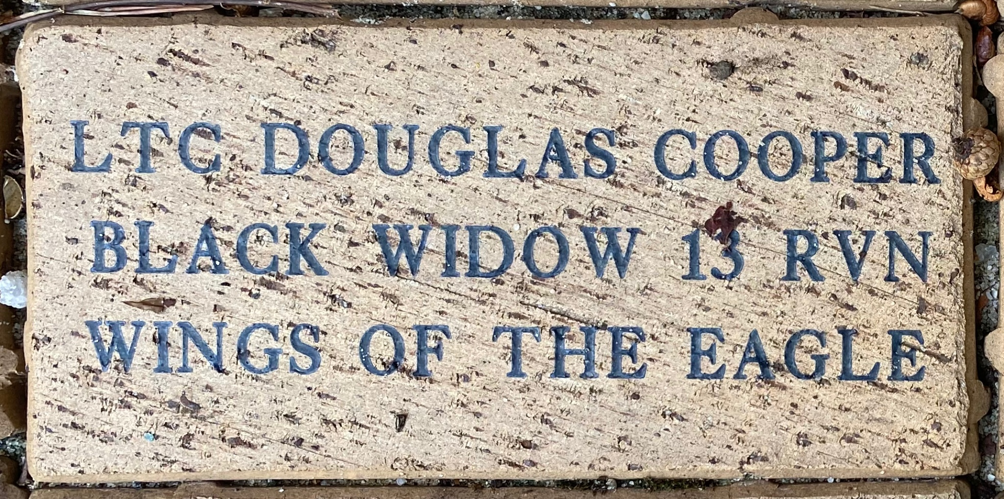 LTC DOUGLAS COOPER BLACK WIDOW 13 RVN WINGS OF THE EAGLE