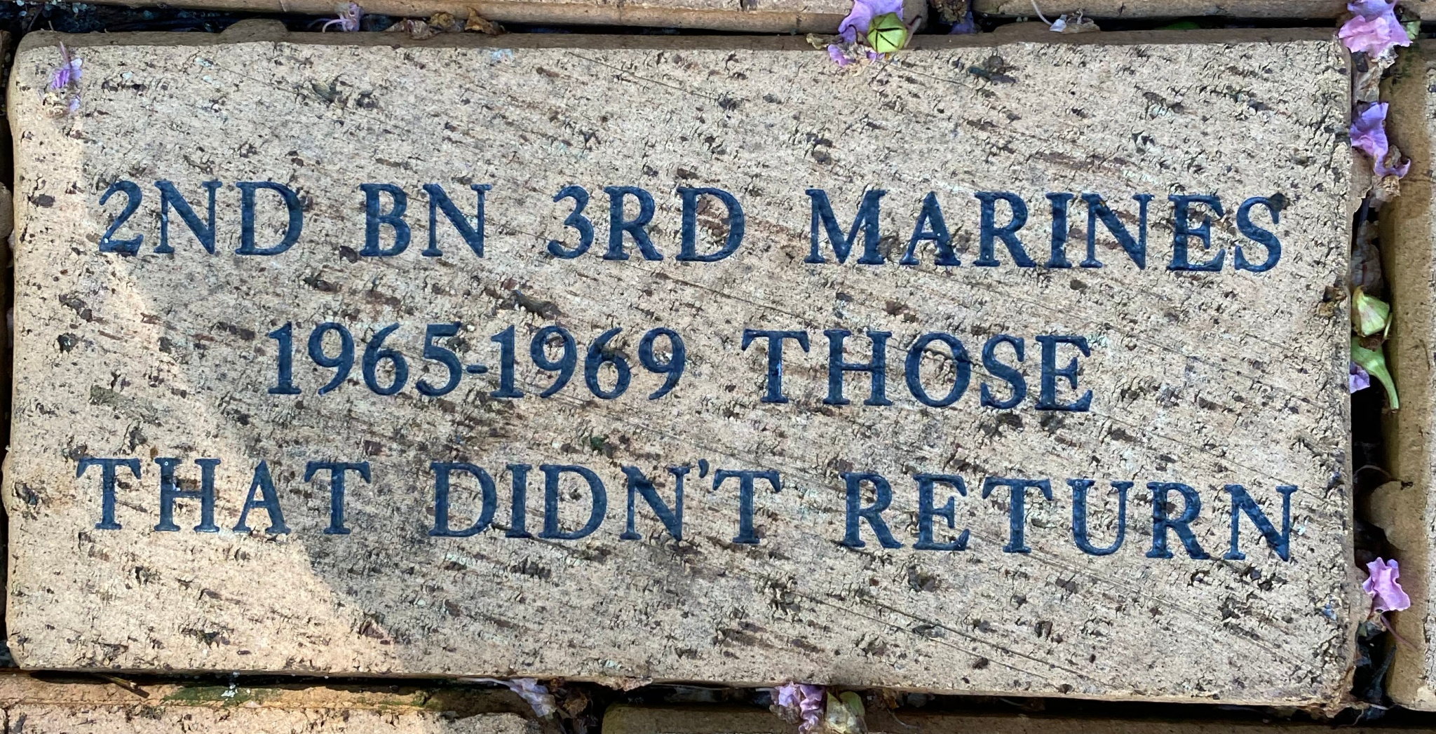 2ND BN 3RD MARINES 1965-1969 THOSE THAT DIDN'T RETURN