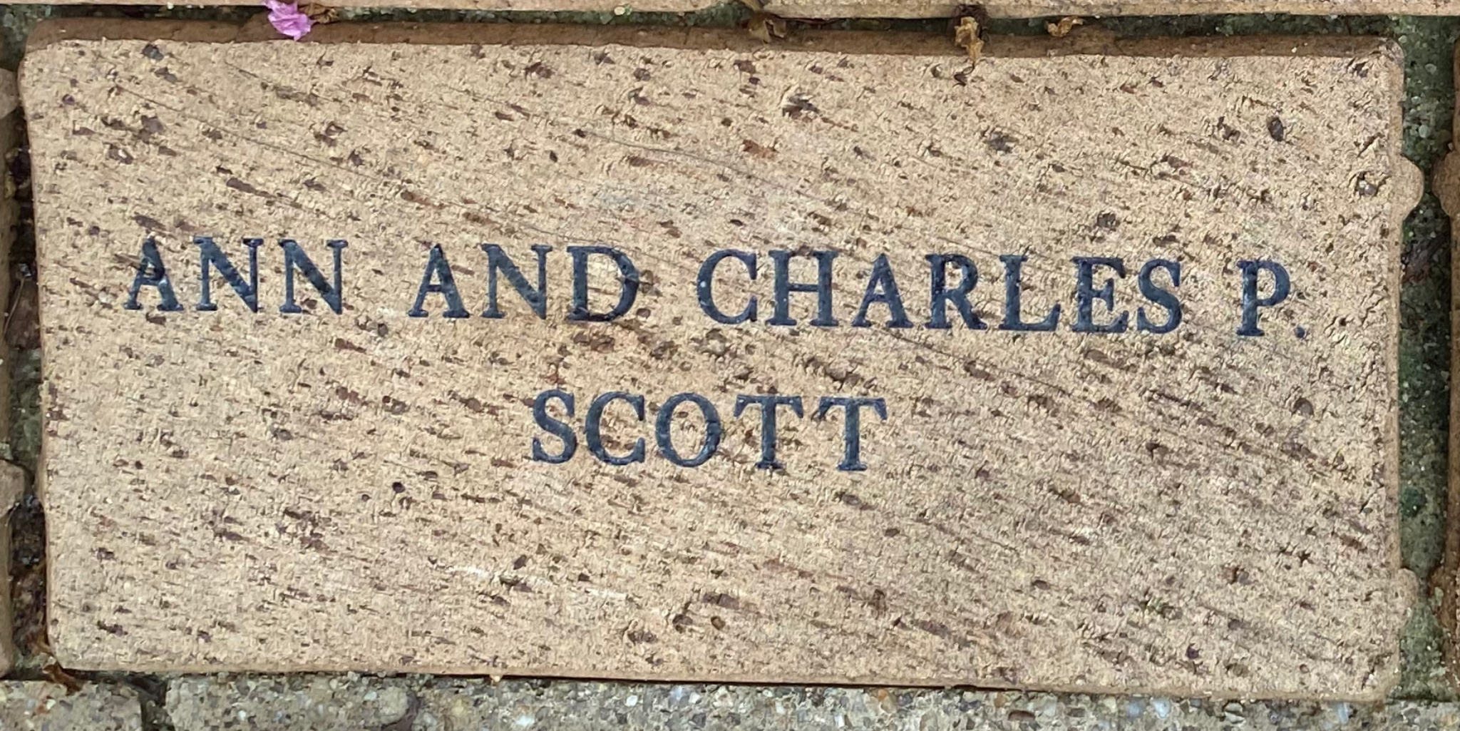 ANN AND CHARLES P SCOTT