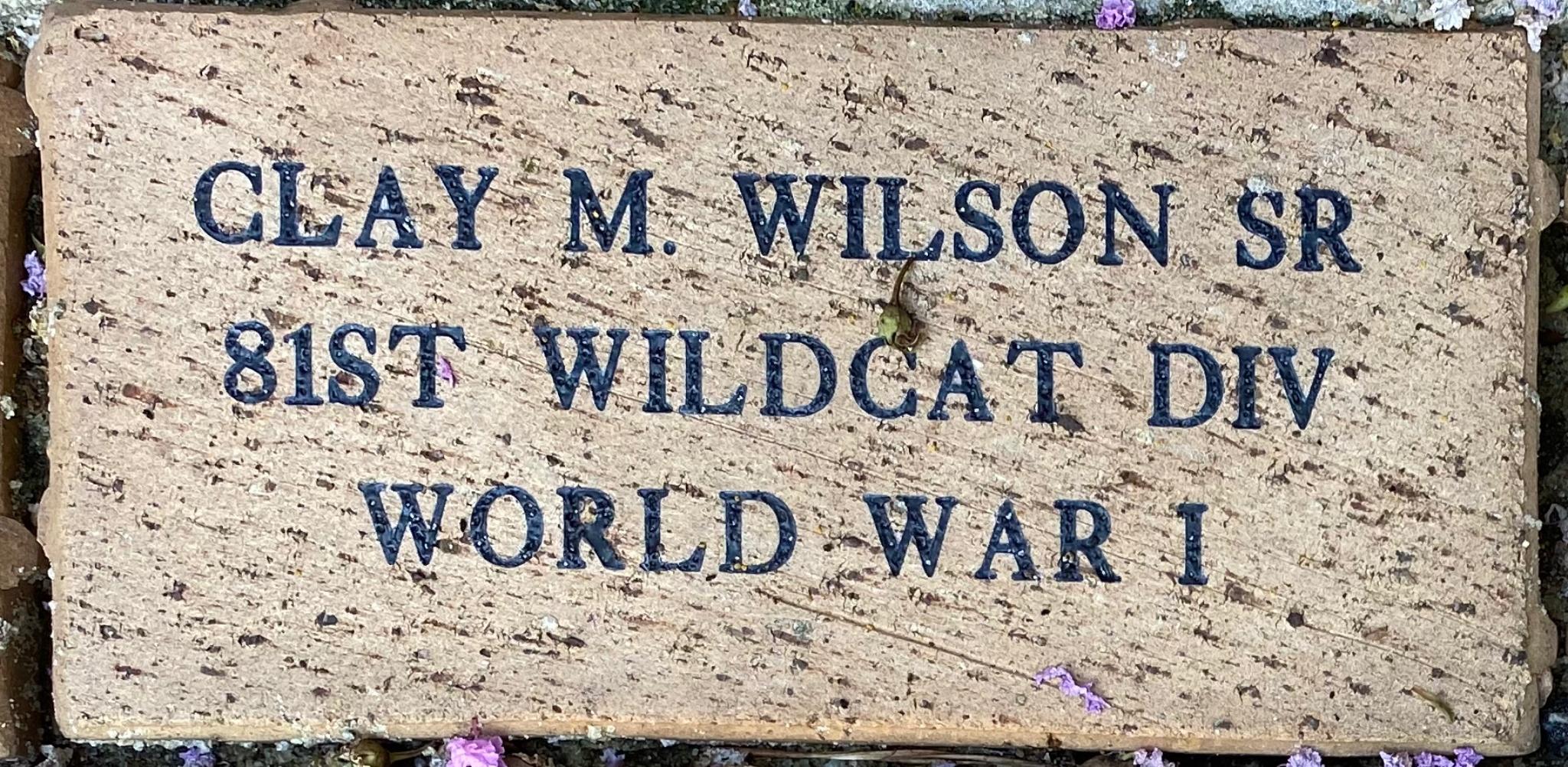 CLAY M. WILSON SR 81ST WILDCAT CIV WORLD WAR I