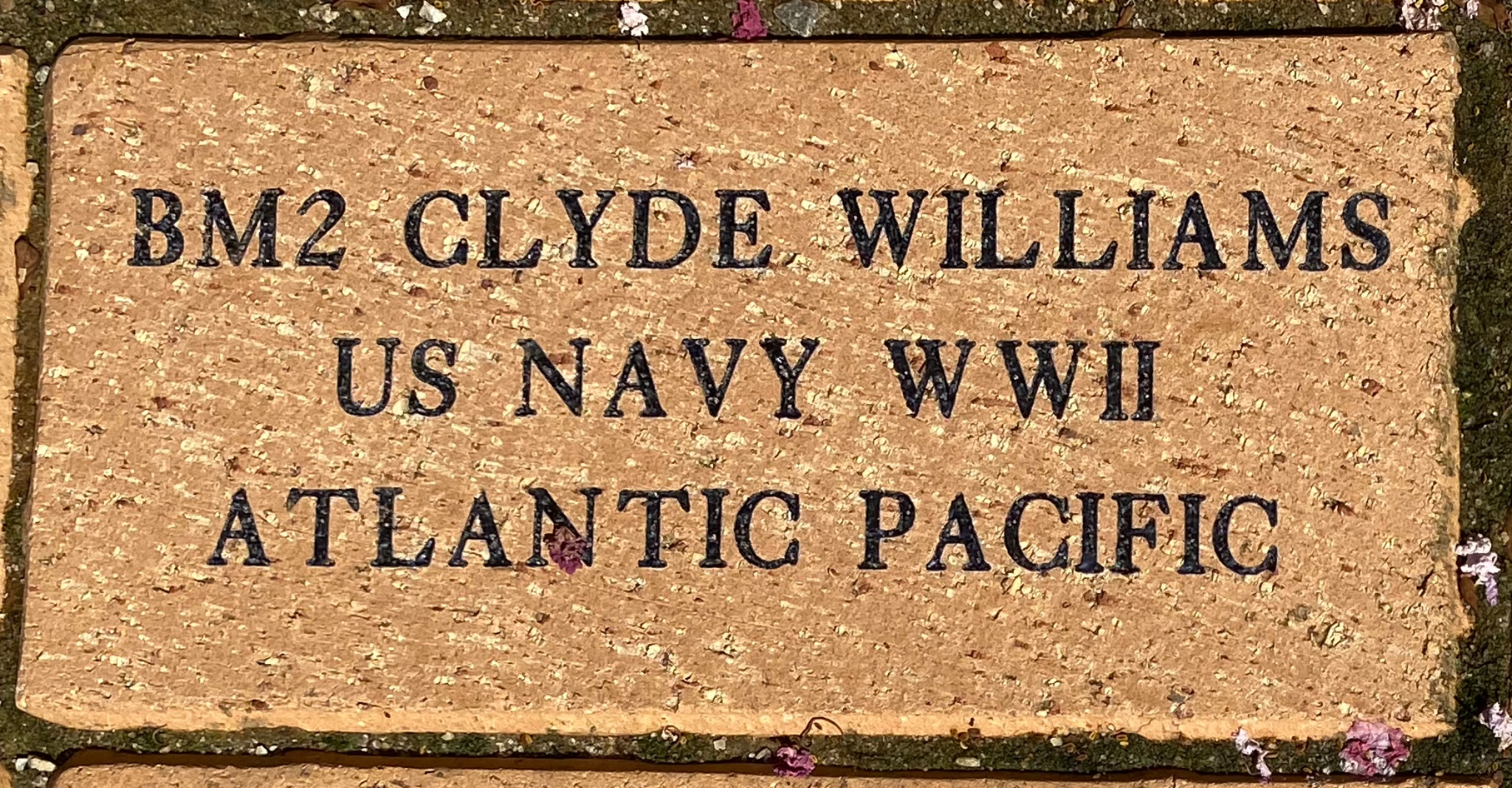 BM2 CLYDE WILLIAMS US NAVY WWII ATLANTIC PACIFIC