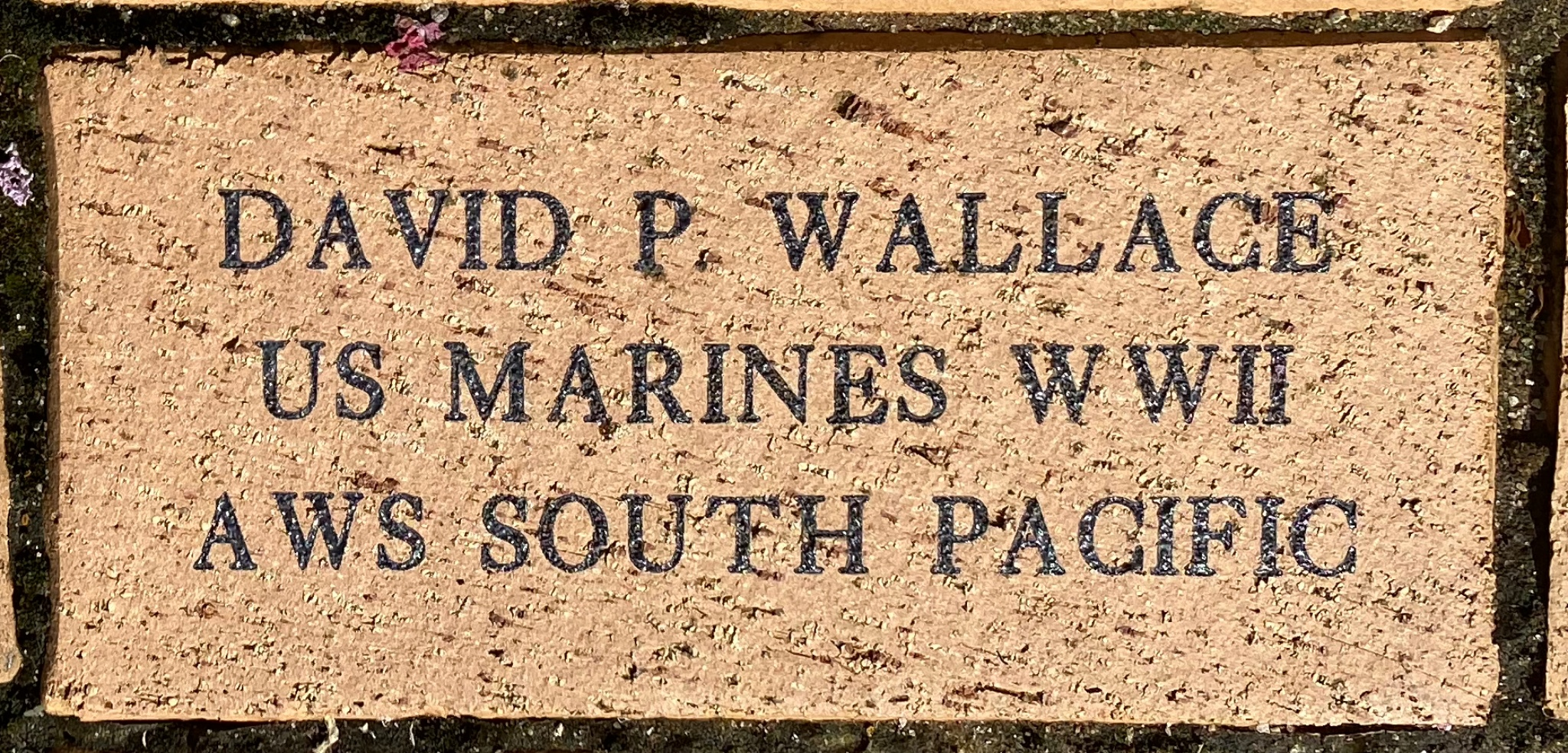 DAVID P WALLACE US MARINES WWII AWS SOUTH PACIFIC
