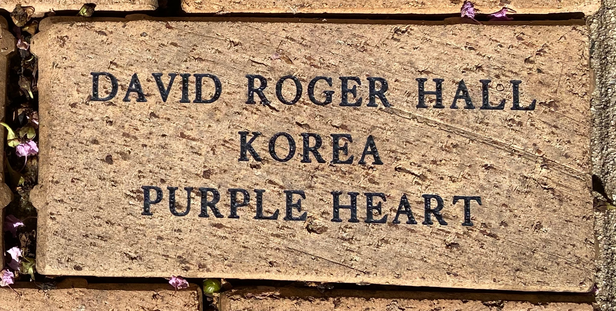 DAVID ROGER HALL KOREA PURPLE HEART