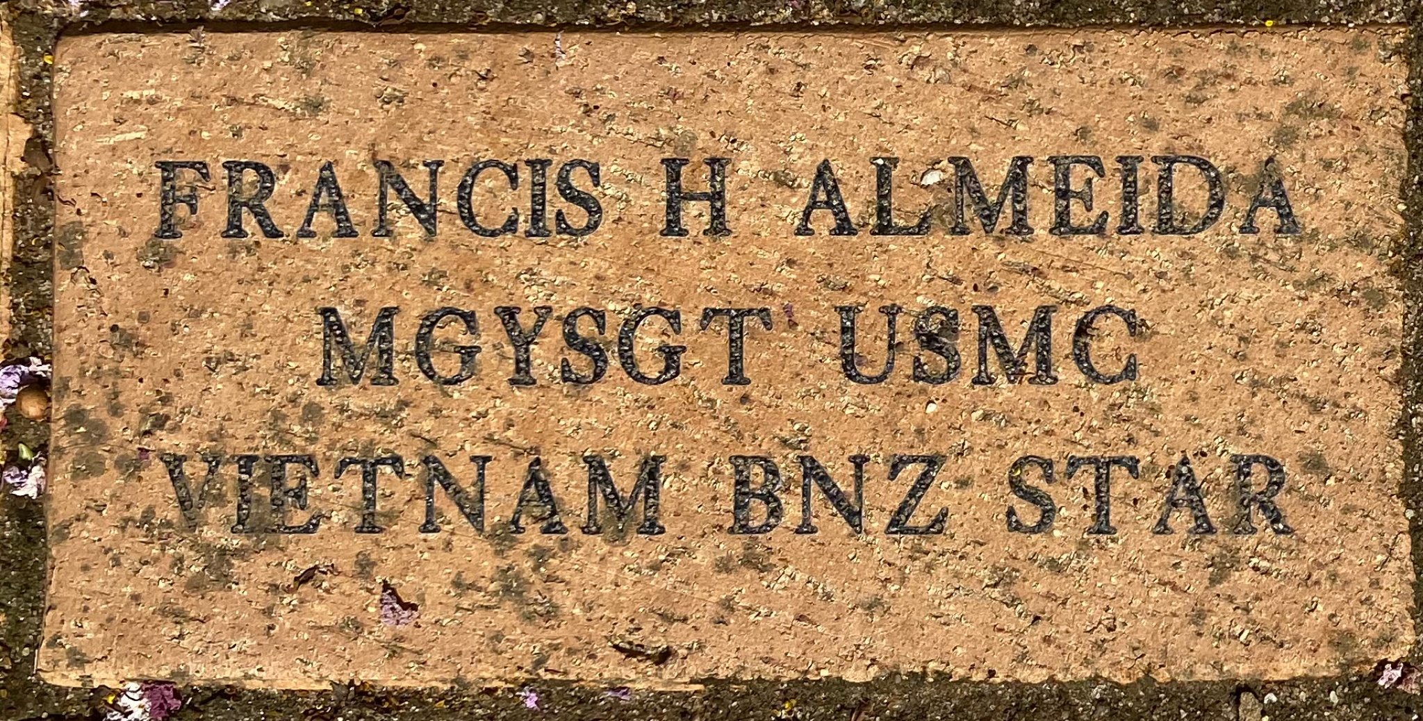 FRANCIS H ALMEIDA MGYSGT USMC VIETNAM BNZ STAR