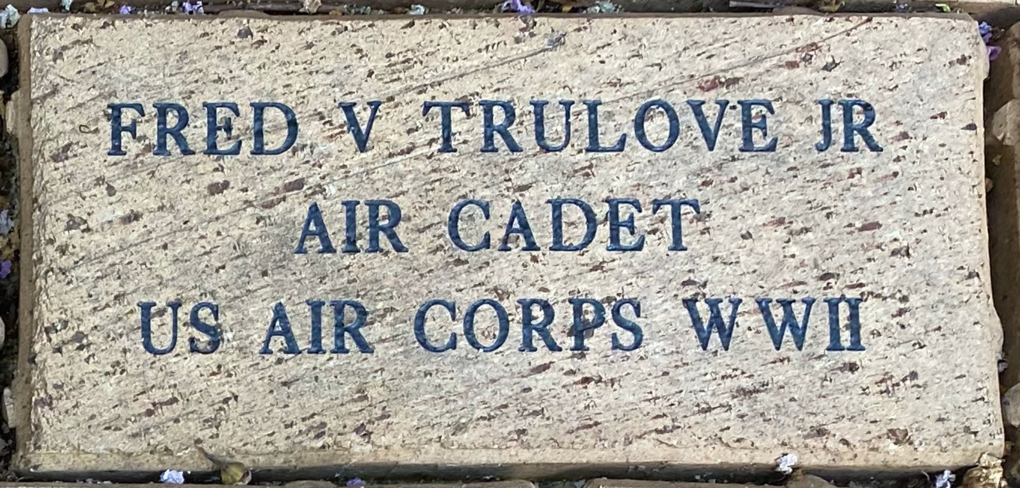 FRED V TRULOVE JR AIR CADET US AIR CORPS WWII
