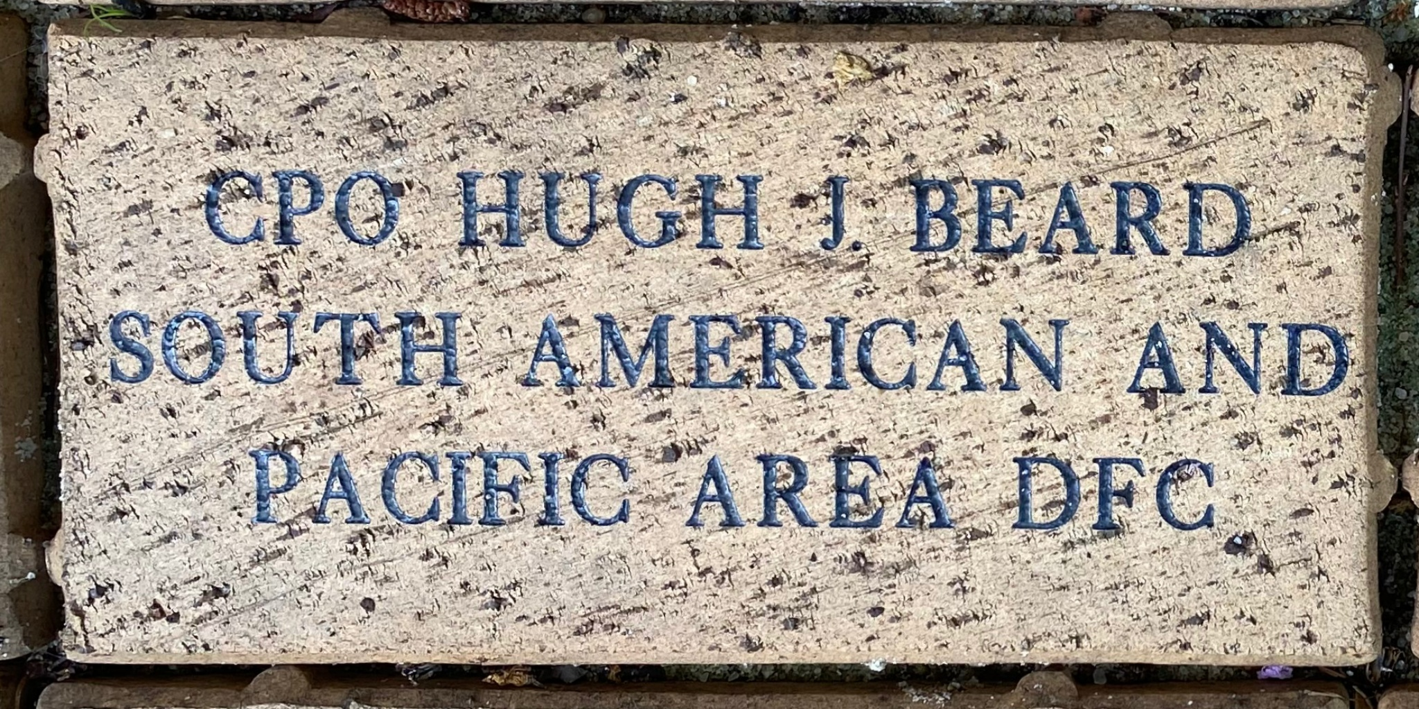CPO HUGH J. BEARD SOUTH AMERICAN AND PACIFIC AREAS DFC