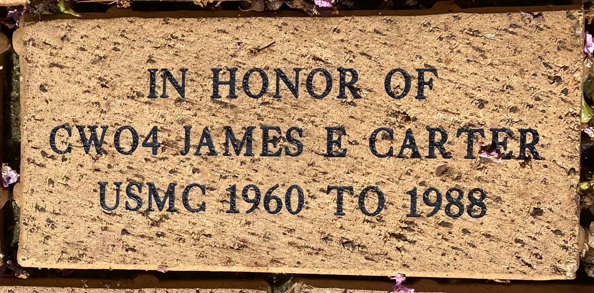IN HONOR OF  CWO4 JAMES E CARTER USMC 1960 TO 1988