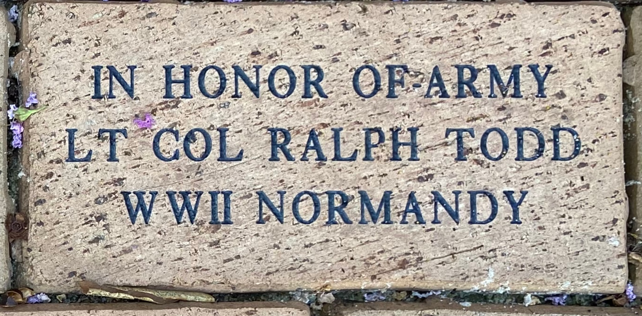 IN HONOR OF ARMY  LT COL RALPH TODD WWII NORMANDY