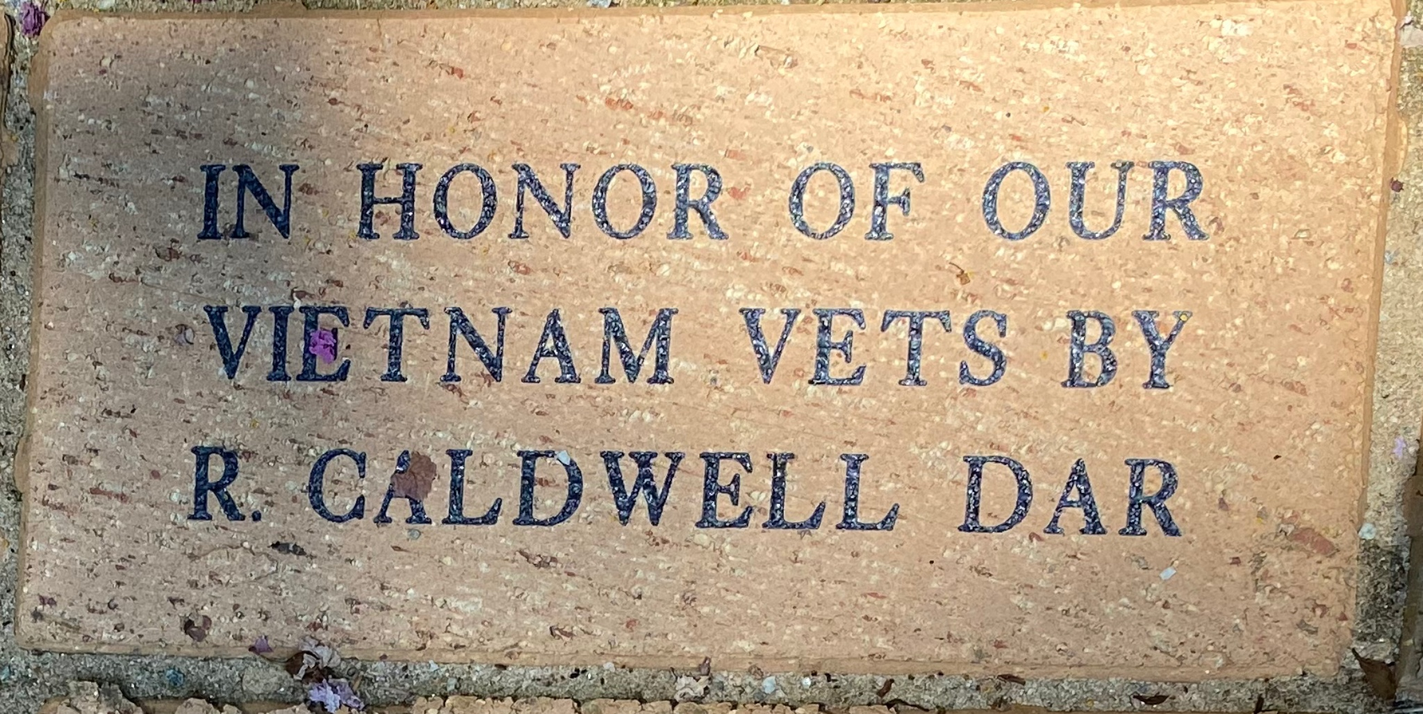 IN HONOR OF OUR VIETNAM VETS BY R. CALDWELL DAR