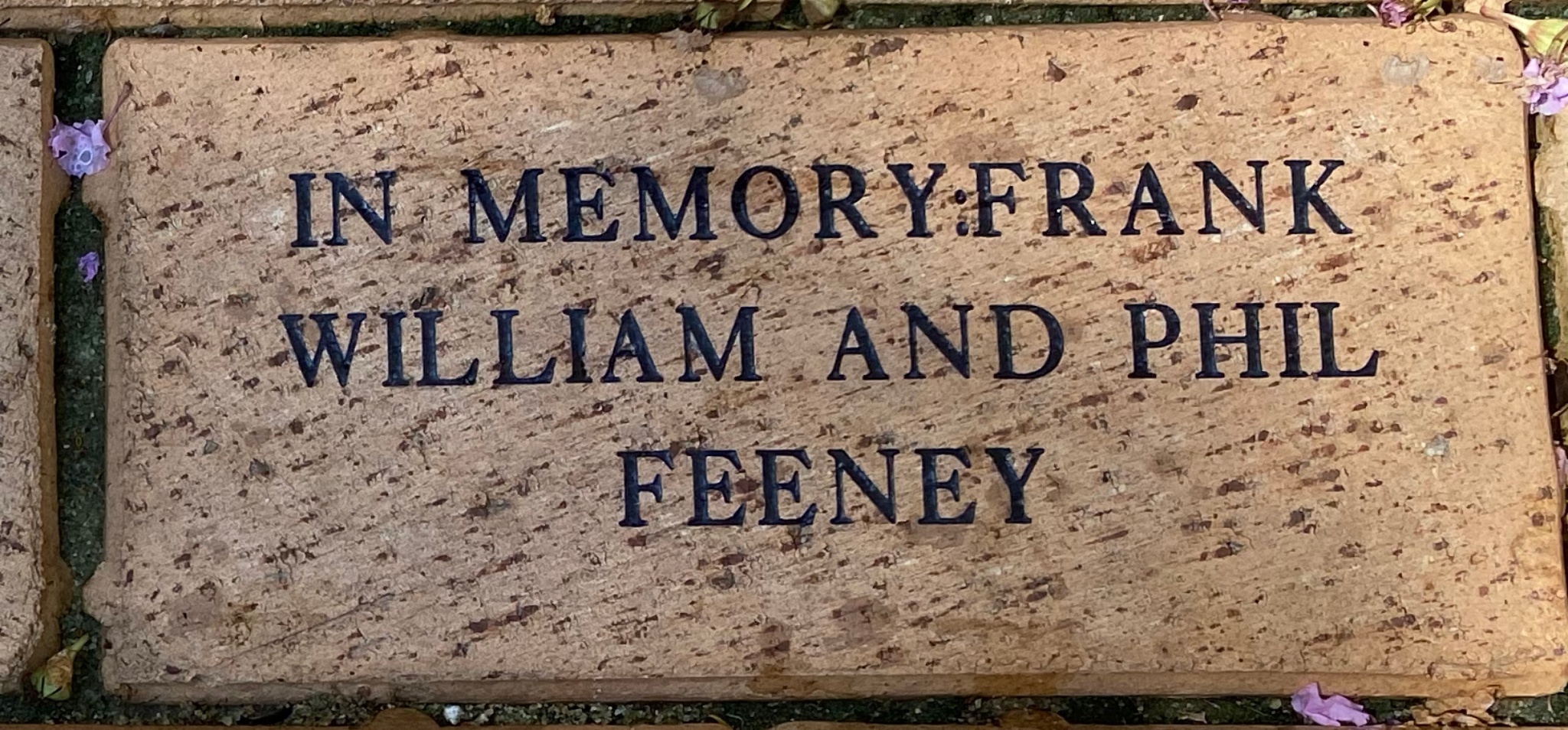 IN MEMORY FRANK, WILLIAM AND PHIL FEENEY