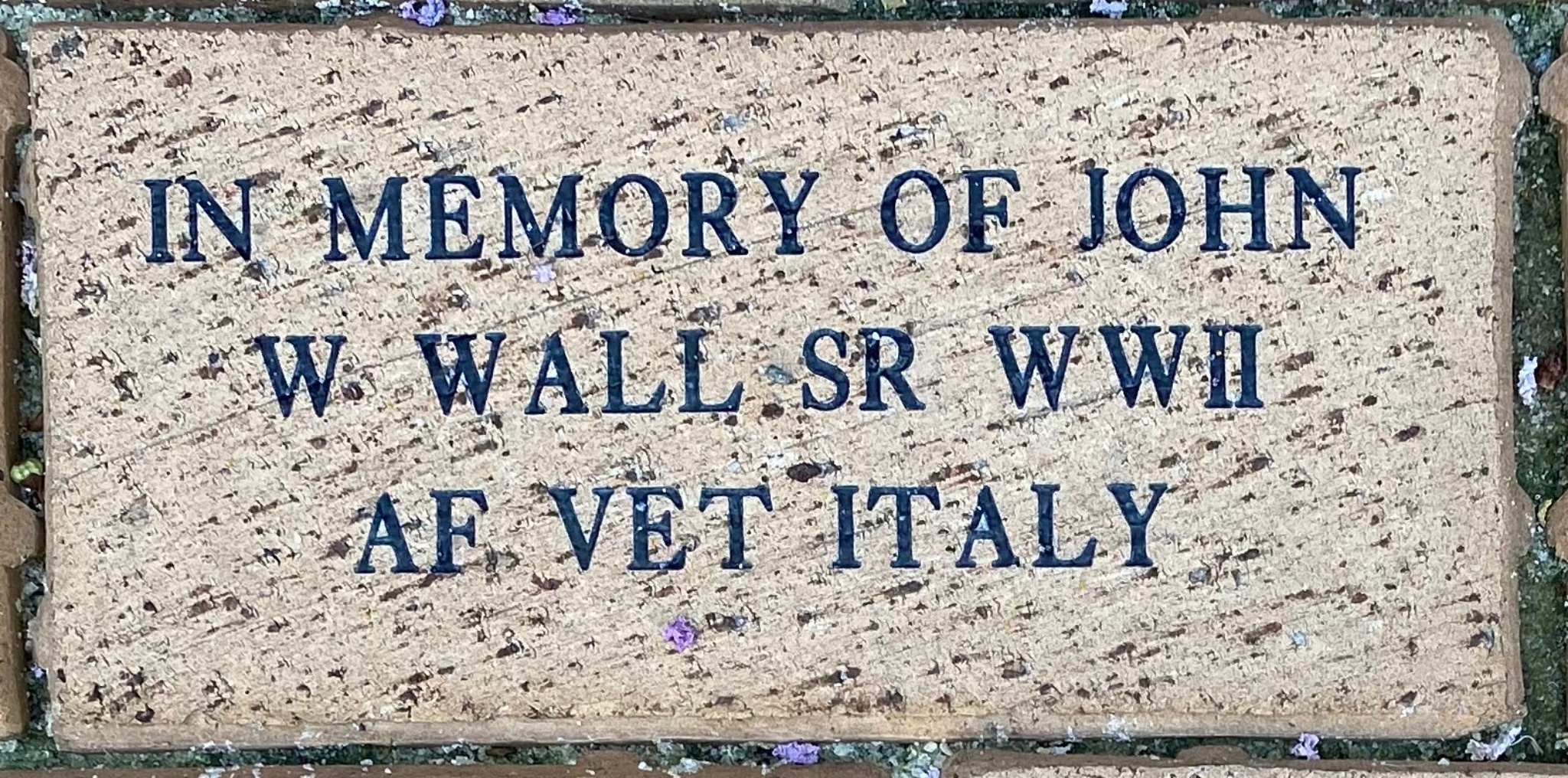 IN MEMORY OF JOHN W. WALL SR WWII AF VET ITALY