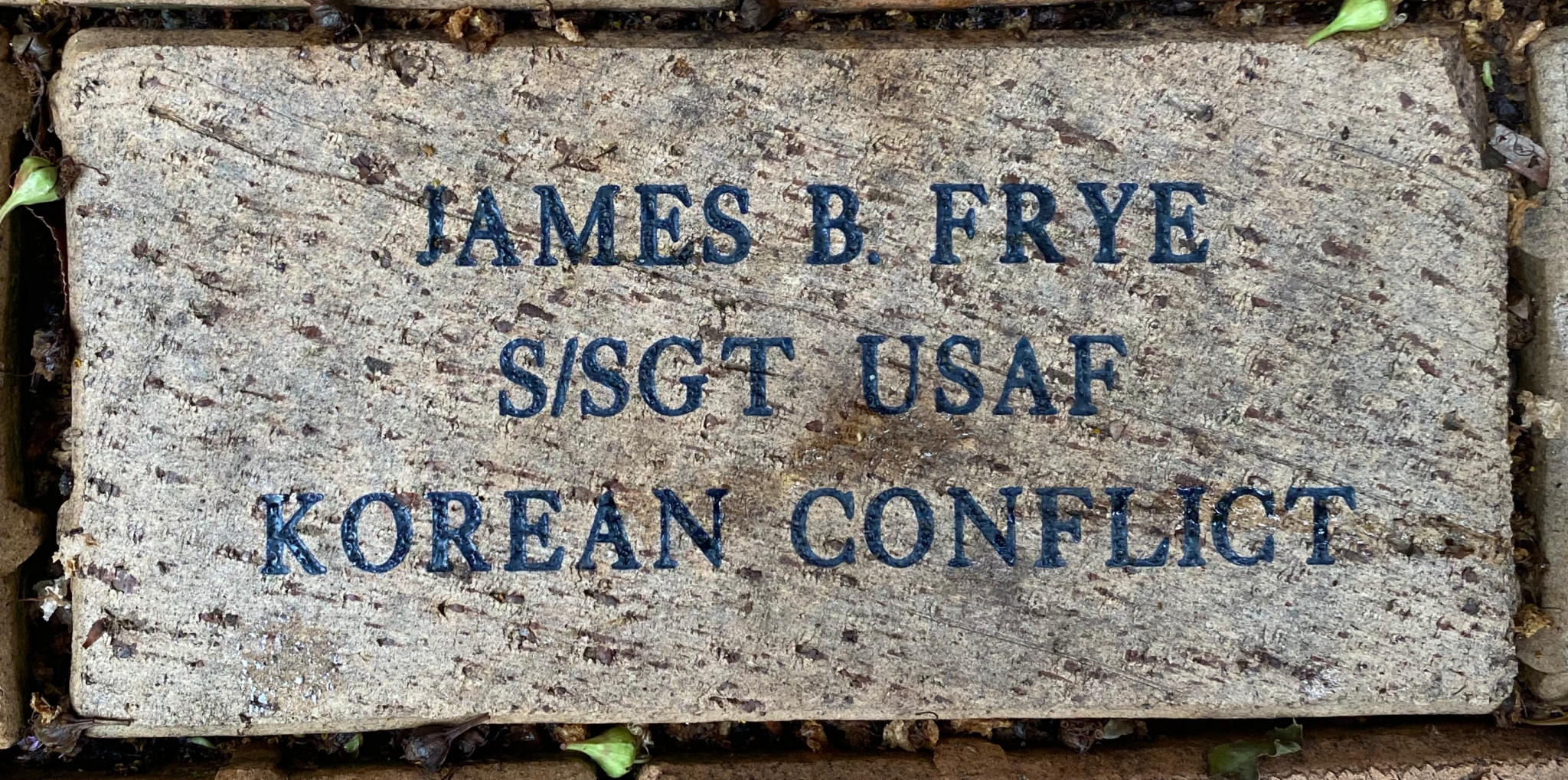 JAMES B. FRYE S/SGT USAF KOREAN CONFLICT