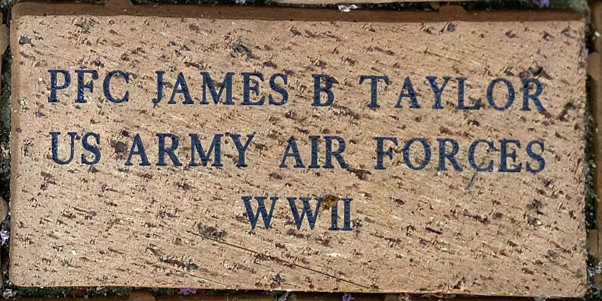 PCF JAMES B TAYLOR US ARMY AIR FORCES WWII