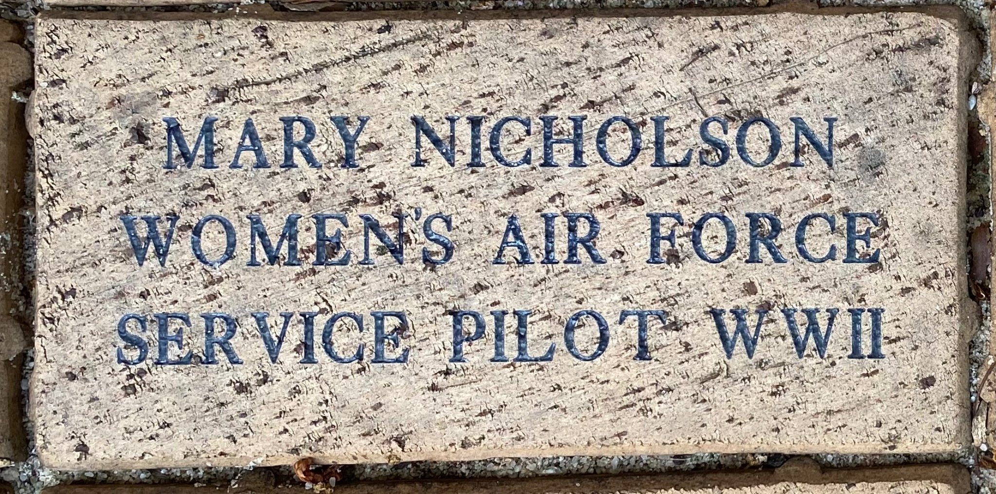 MARY NICHOLSON WOMEN'S AIR FORCE SERVICE PILOT WWII