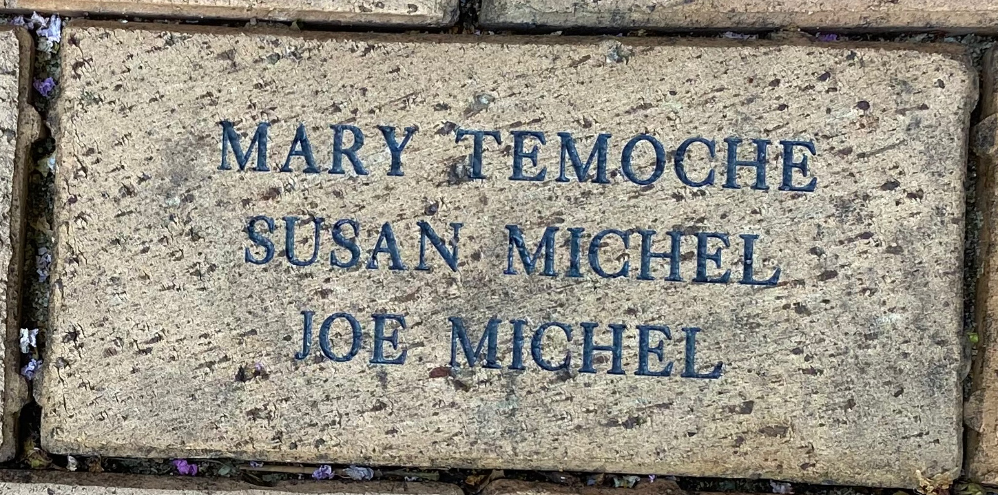 MARY TEMOCHE SUSAN MICHEL JOE MICHEL