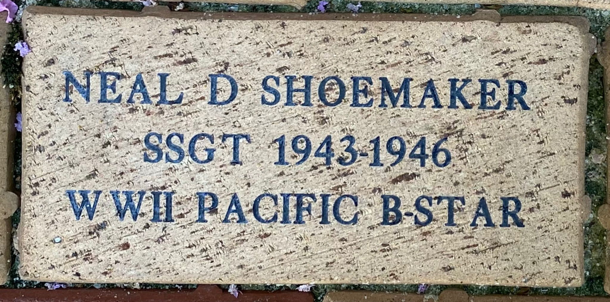 NEAL D SHOEMAKER SSGT 1943-1946 WWII-PACIFIC B-STAR