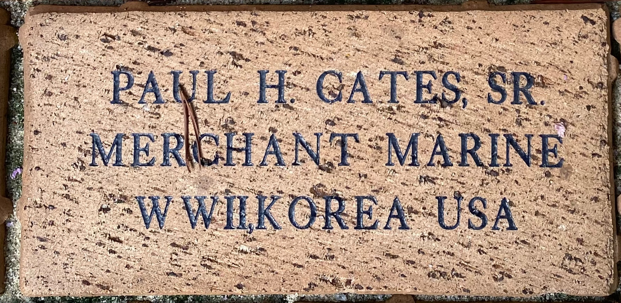 PAUL H GATES SR MERCHANT MARINE WWII,KOREA US ARMY