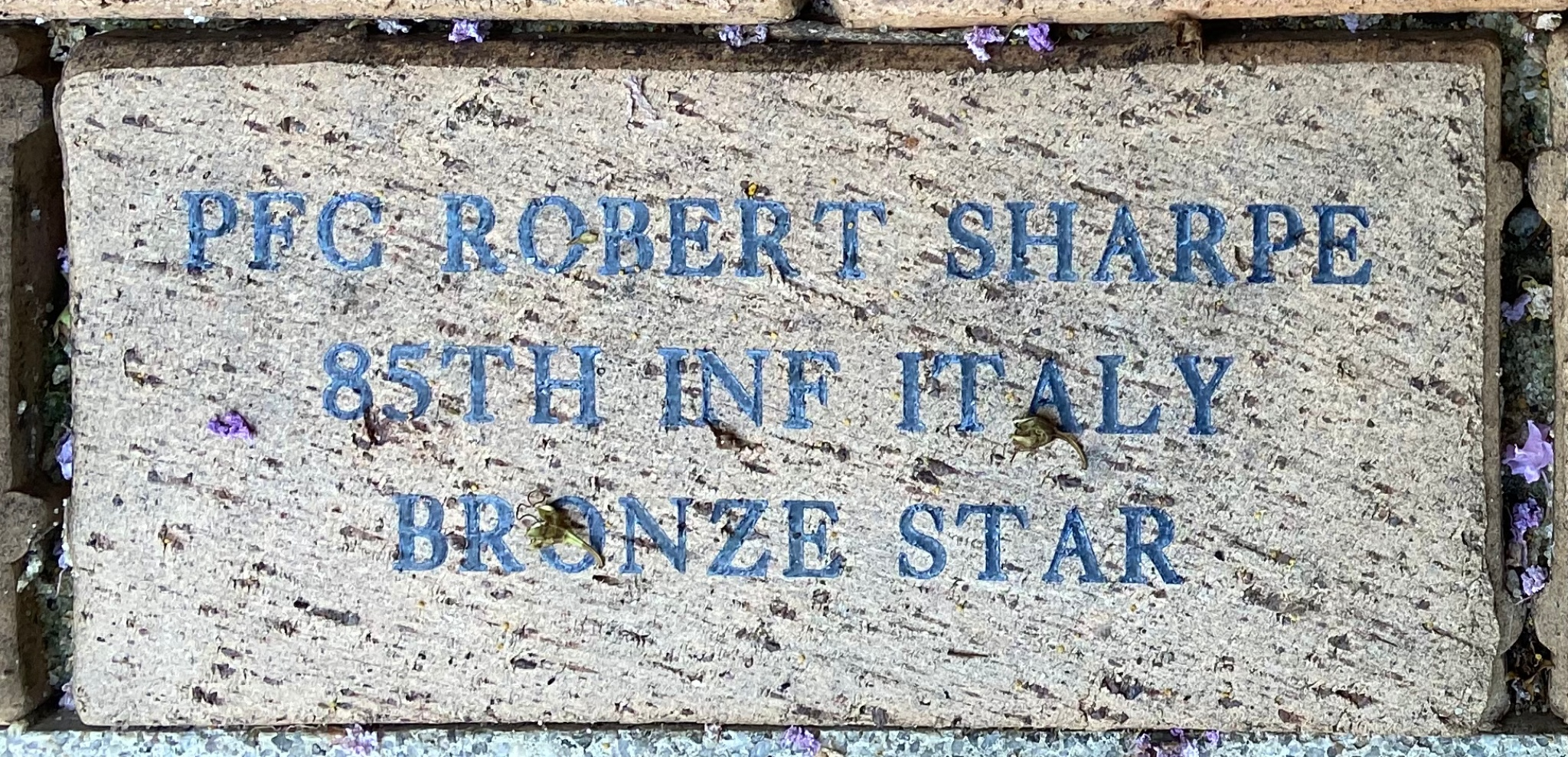 PFC ROBERT SHARPE 85TH INF ITALY BRONZE STAR