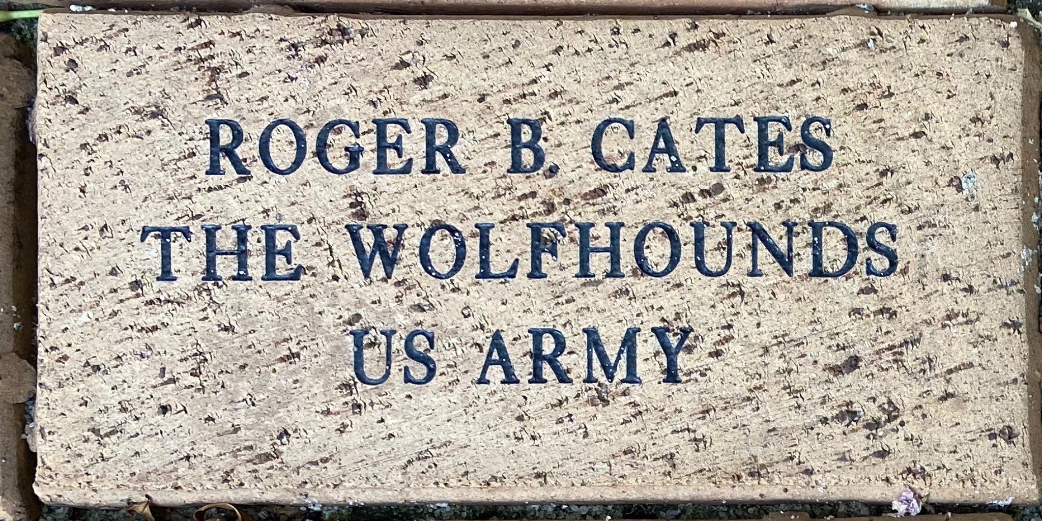 ROGER B. CATES THE WOLFHOUNDS U.S. ARMY