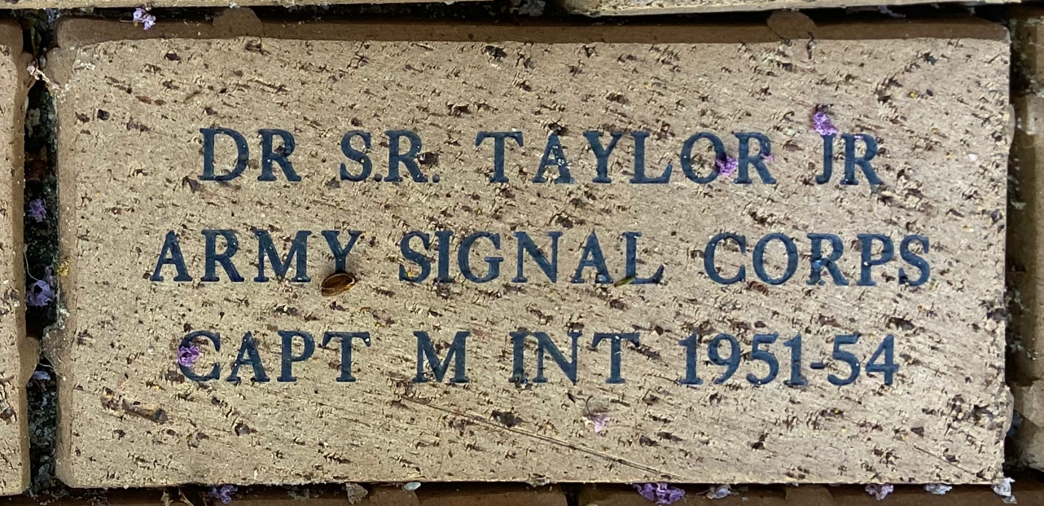 DR. S.R. TAYLOR JR ARMY SIGNAL CORPS CAPT M INT 1951-54
