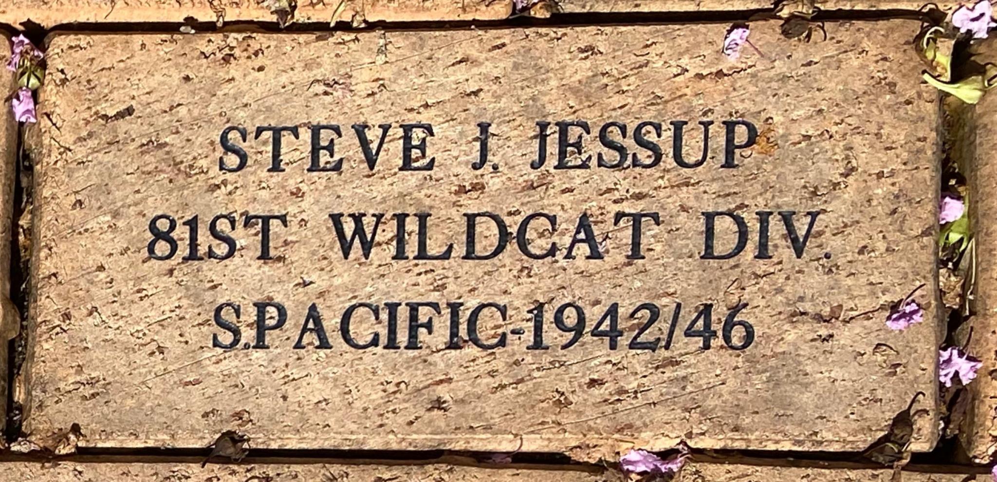 STEVE J. JESSUP 81ST WILDCAT DIV. S. PACIFIC-1942/46