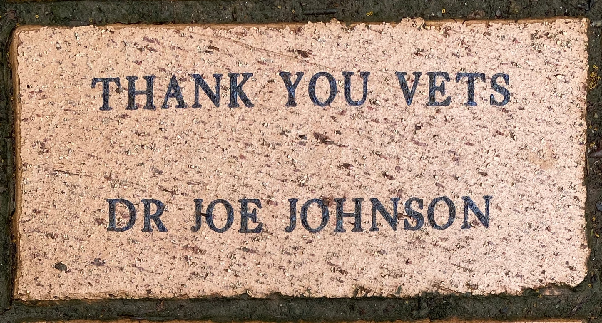 THANK YOU VETS  DR JOE JOHNSON