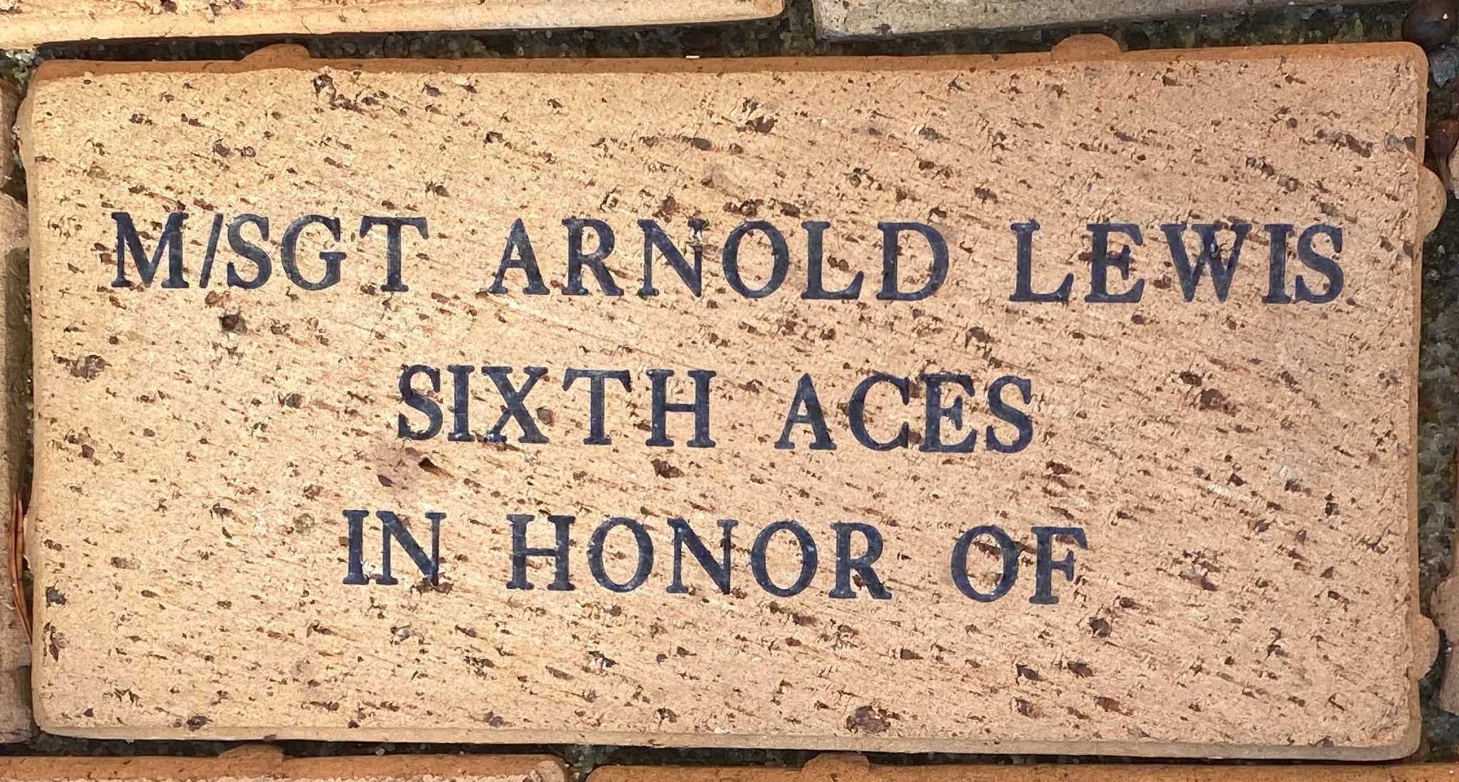 M/SGT ARNOLD LEWIS SIXTH ACES IN HONOR OF
