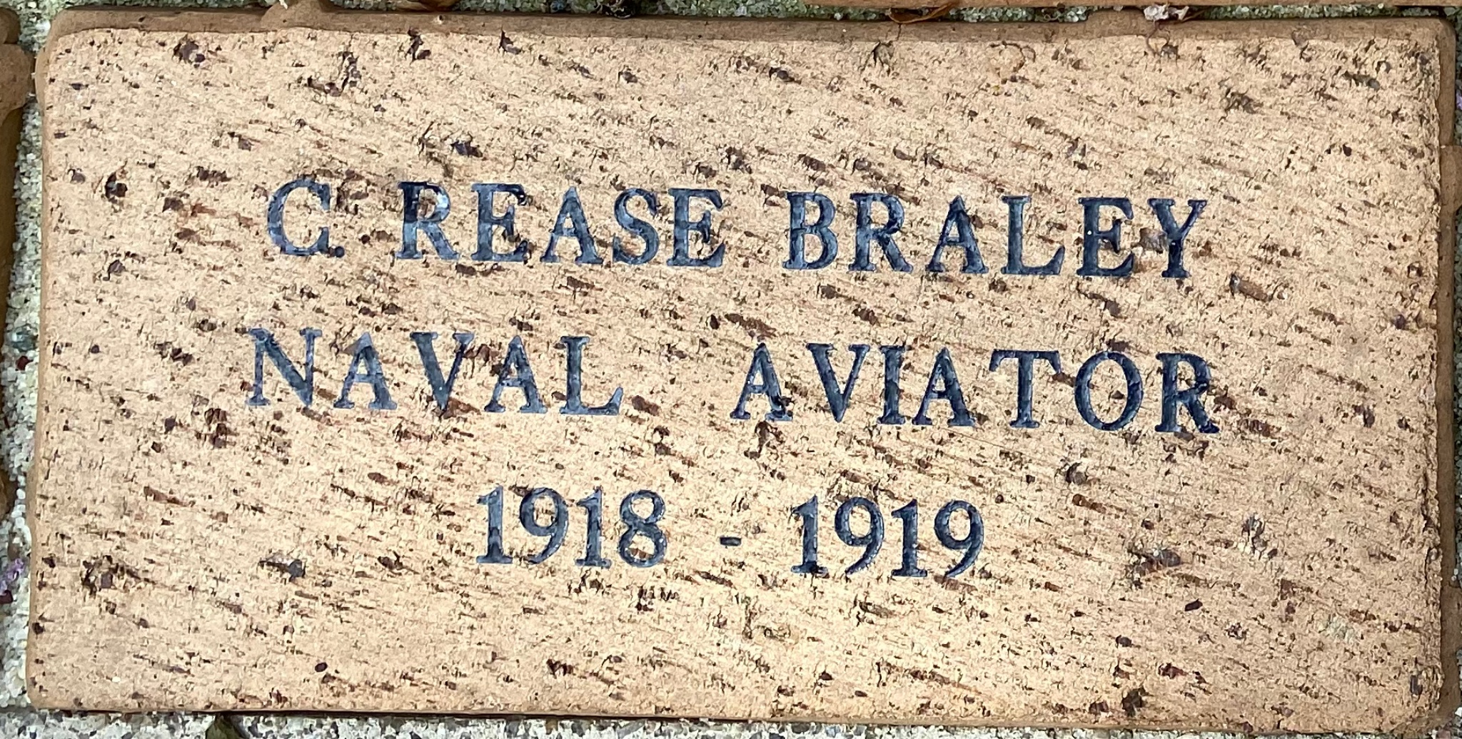 C. REASE BRALEY NAVAL AVIATOR 1918 – 1919