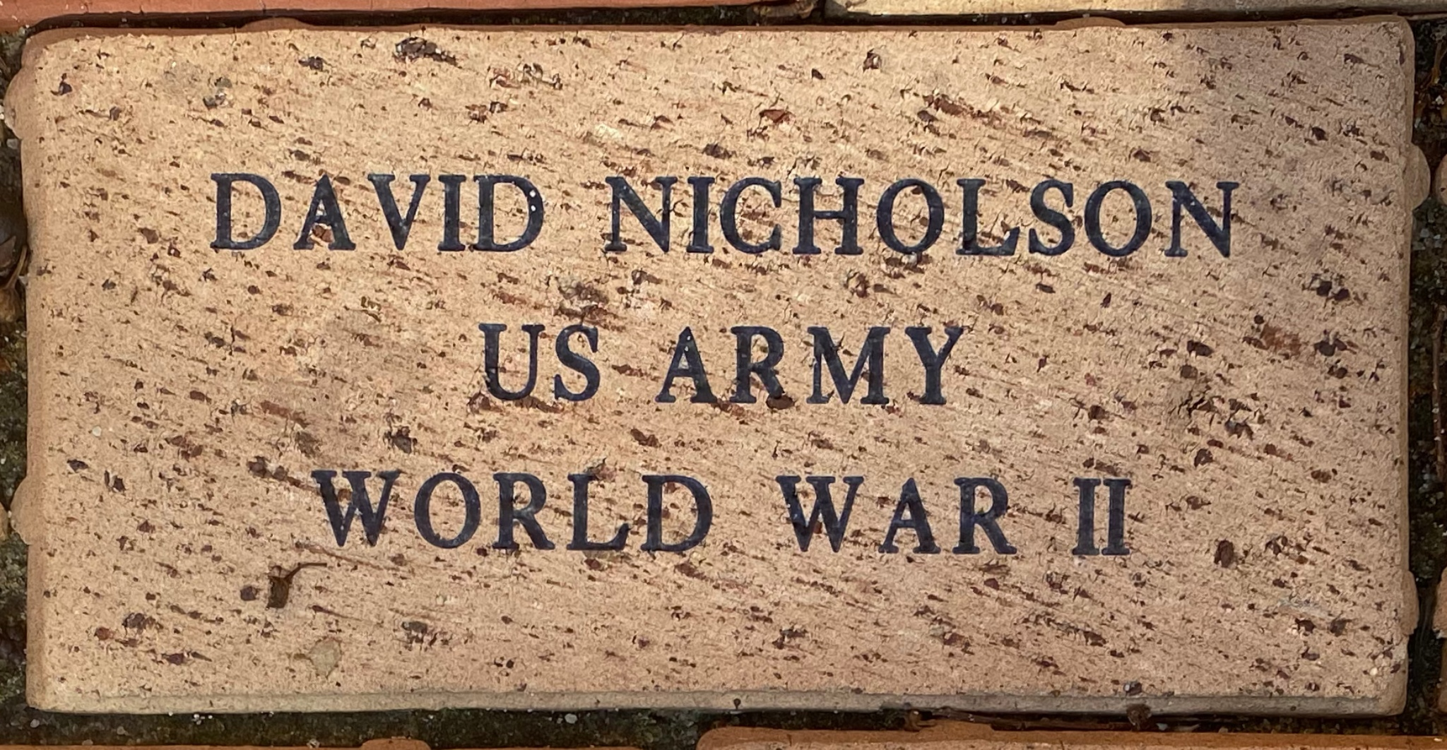 DAVID NICHOLSON US ARMY WORLD WAR II