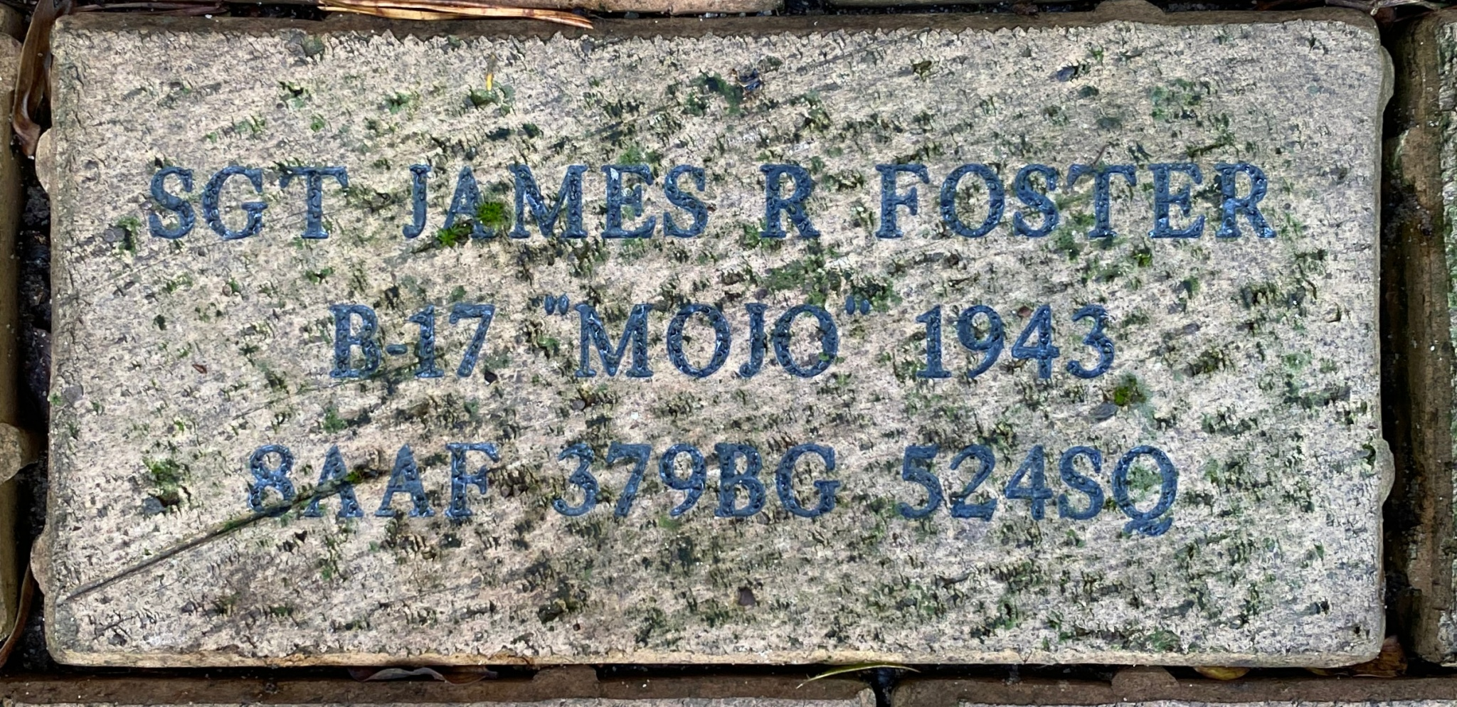 "SGT JAMES R FOSTER B-17"" ""MOJO"""" 1943 8AAF 379BG 524SQ"