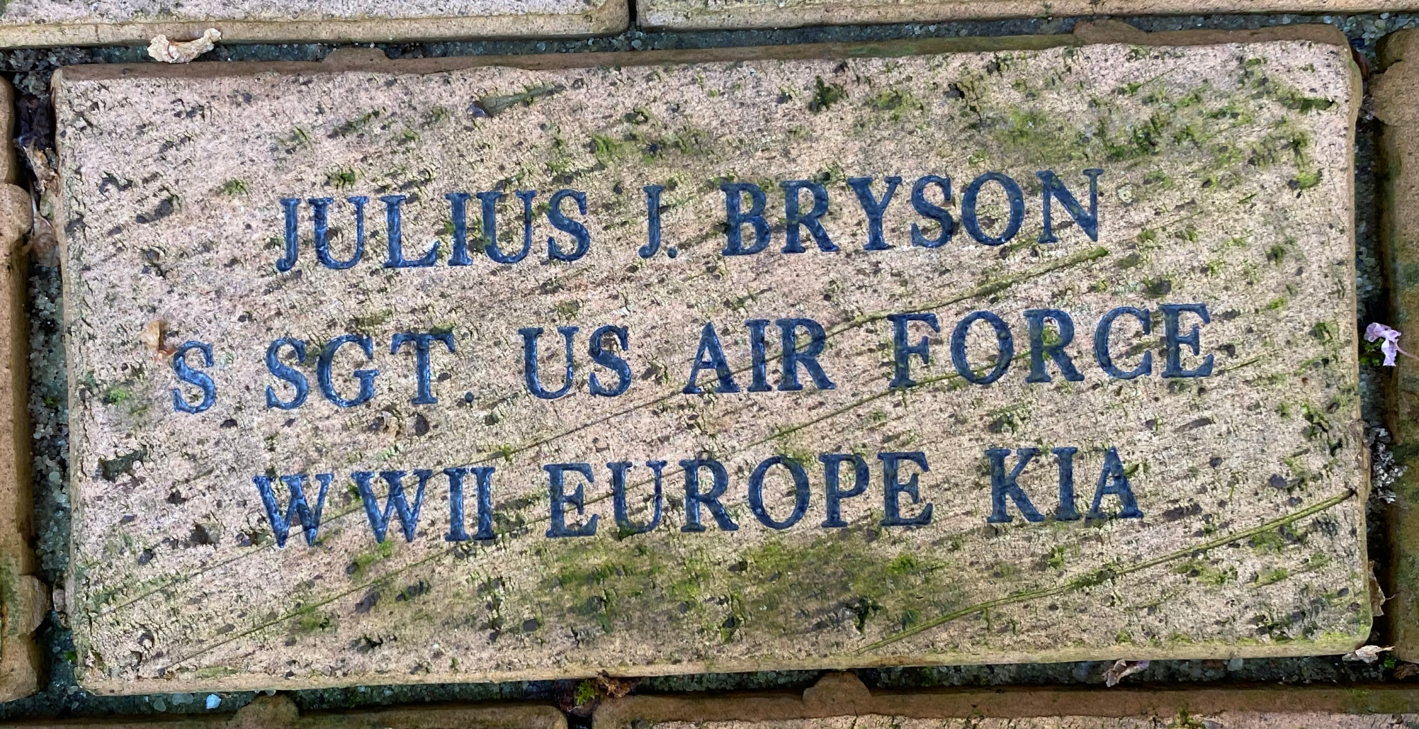 JULIUS J. BRYSON S SGT US AIR FORCE WWII EUROPE KIA