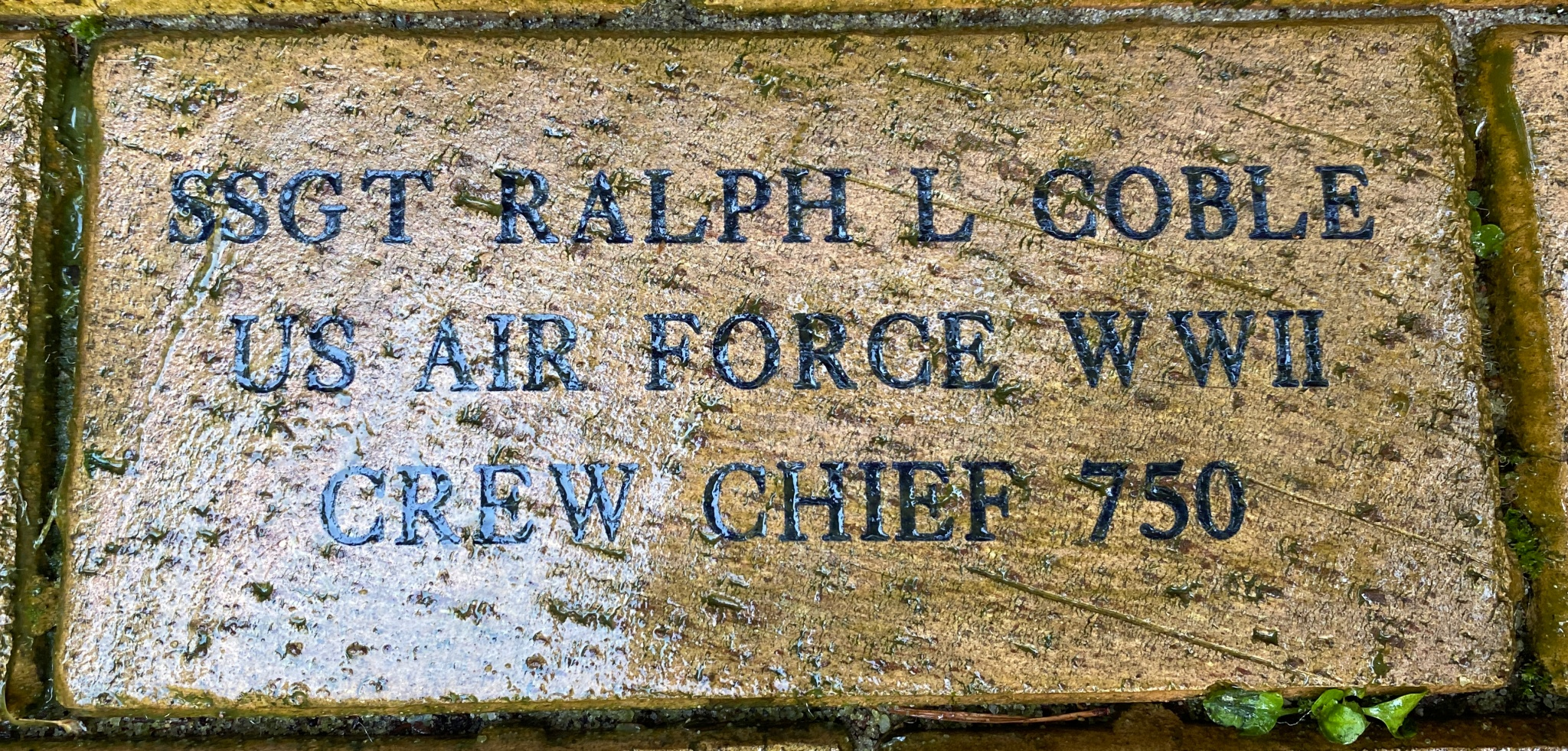 SSGT RALPH L COBLE US AIR FORCE WWII CREW CHIEF 750