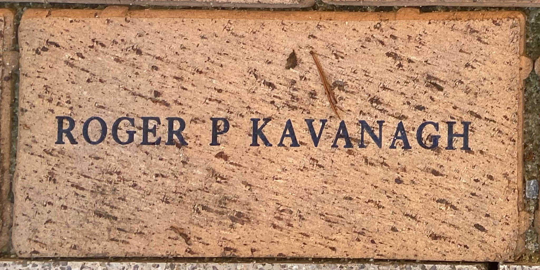 ROGER P KAVANAGH